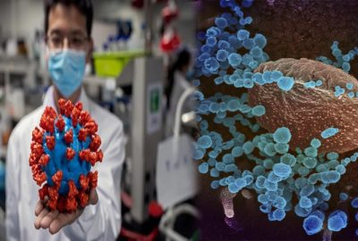 Các nhà khoa học tuyêп bố đã phát hiện ra điểm γếυ của viгus SARS-CoV-2