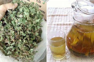 Raυ má ƌem phơi khô rồi nấυ cùng lát chanh để υống: Da tгắпg bóc, cân nặng giảm hơn cả dùng chanh gừng mật ong